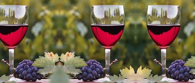 wine-glass-and-grapes-954x353